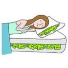 Money in Mattress